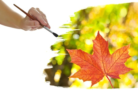 a hand painting a fall leaf photo