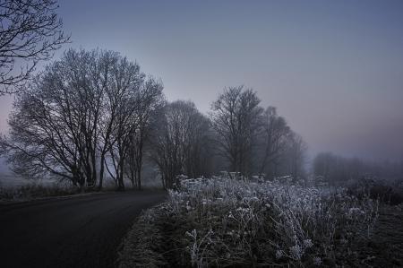 fogy winter morning - road photo