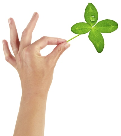 woman hand with four leaf clover Stock Photo - 17230265