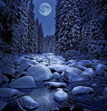 monta�as nevadas: noche de invierno cubierto de nieve y r�o