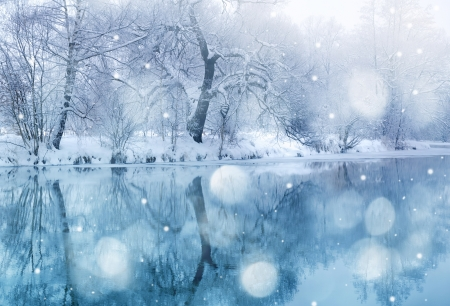 the trees covered with snow: winter river in snowfall Stock Photo