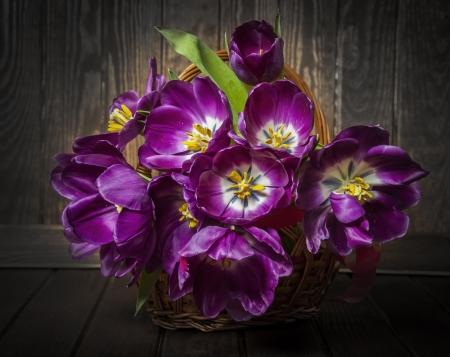 arreglo de flores: Tulipanes púrpuras en una cesta - estilo de la vendimia