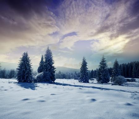 vinterlandskap med soluppgången Stockfoto