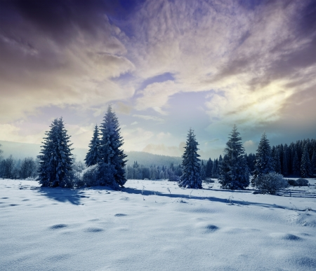 winter landscape with sunrise