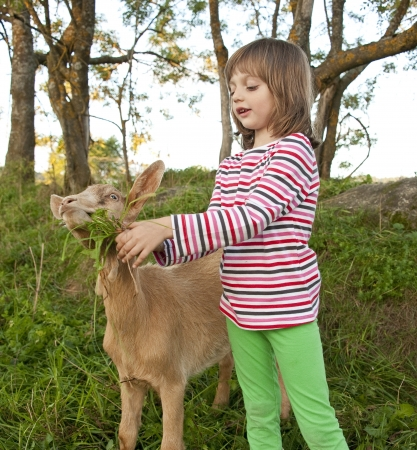cute young farm girl: little girl with brown goat on a pasture Stock Photo