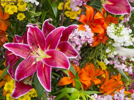buch: buch of spring flowers