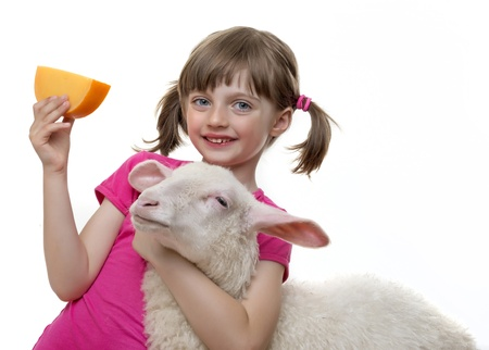little girl with a sheep and a cheese photo