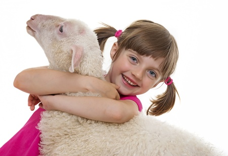 happy little girl with a sheep photo