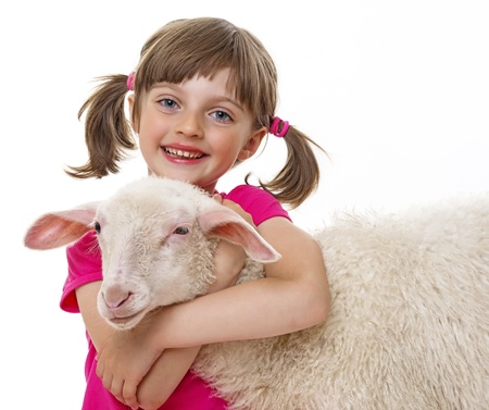 happy little girl with sheep photo