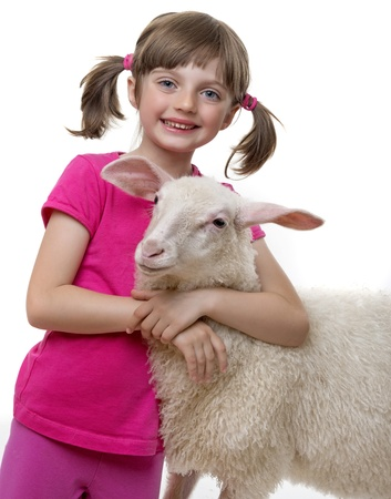little girl with sheep photo