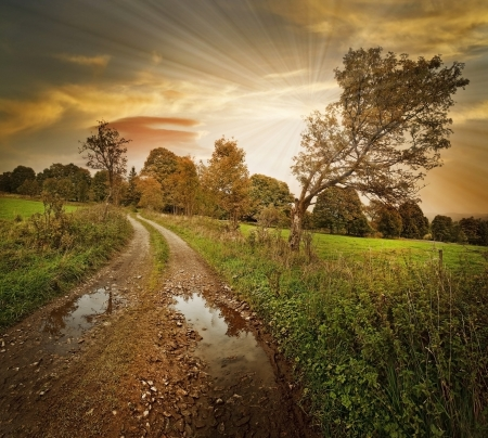 autumn landscape with sunset Stock Photo