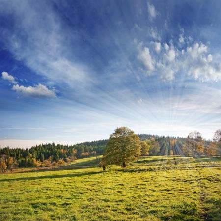 autumnal landscape  写真素材
