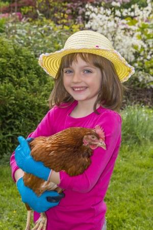 little girl holding a hen photo