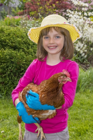 little girl with a hen photo