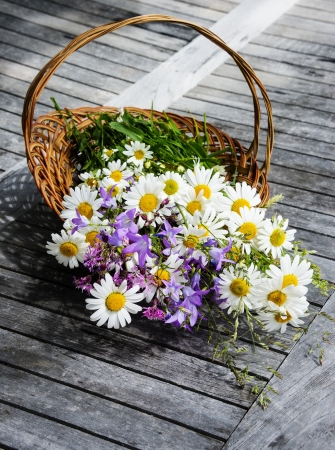 basket with wild flowers - daisies and blue bells photo