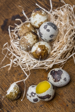 raw quail eggs photo