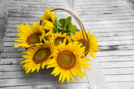 sunflowers in a basket on a table photo