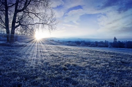 日の出と冬の朝 写真素材