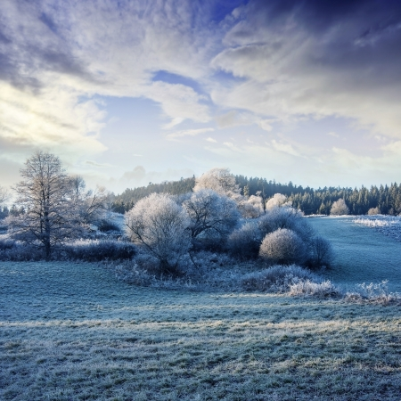 a winter morning with a beautiful sunrise - frozen landscape photo