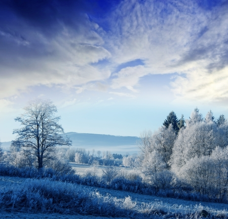 a winter morning with a sunrise - frozen landscape photo