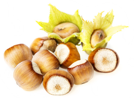 hazel nuts on a white background photo