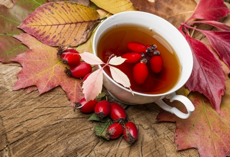 autumn still life with a cup of rosehip tea photo