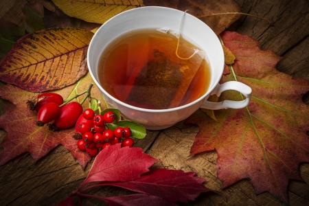 an autumn still life with a cup of tea Archivio Fotografico