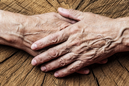 old elderly hands and old tree - concept photo