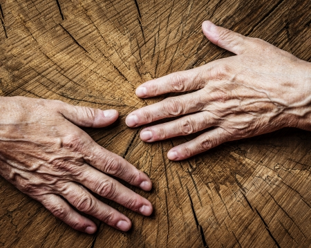 elderly concept - old hands and old tree photo