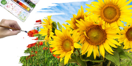 hand paint picture with sunflowers photo