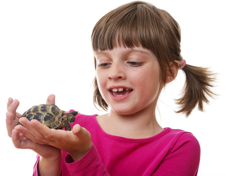 happly little girl holding a pet turtle
