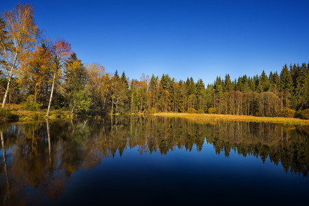 autumn landscape - lake and autumnal forest photo