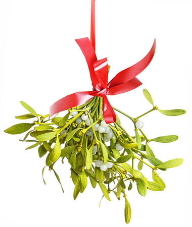 hanging on: mistletoe isolated on a white background