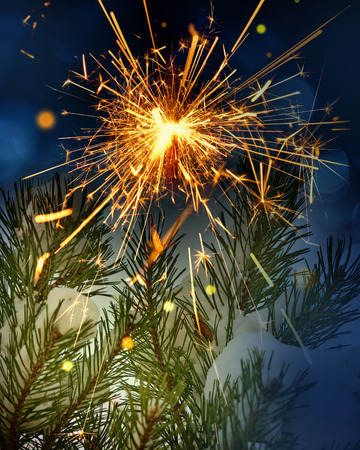 snow covered tree and sparkler photo