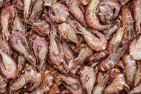 close up food: shrimps close up - food background