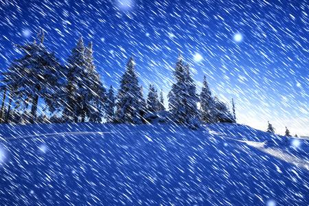 winter evening: winter evening landscape
