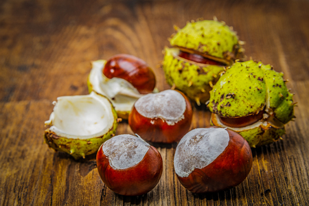 horse chestnut seed: chestnuts on an old table - autumnal still life Stock Photo