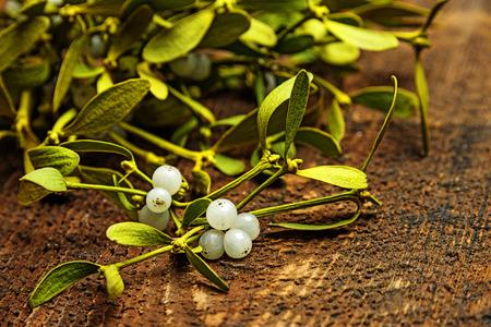 mistletoe branch on a wooden background