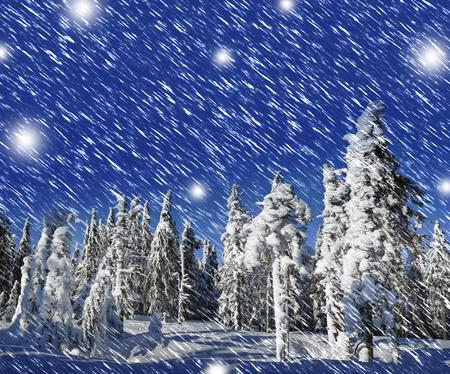 snow covered mountain: snow covered mountain forest Stock Photo