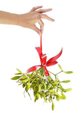 a hand holding christmas mistletoe