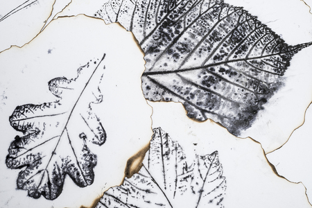 monotype: artistic image - imprints of leaves - Graphics - monotype Stock Photo