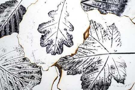 artistic image - imprints of leaves - Graphics - monotype Stock Photo