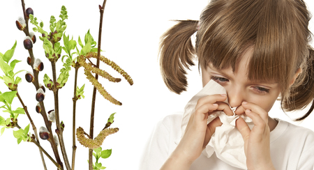 catarrh: portrait of little girl with handkerchief  - allergy