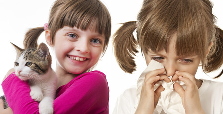 catarrh: allergy Stock Photo