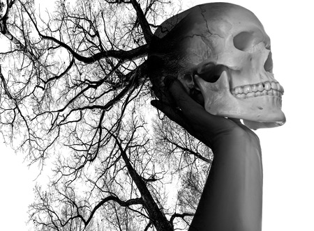 death head holding: hand with scull on white background