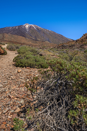 canary islands: Teide National Park, Tenerife, Canary Islands