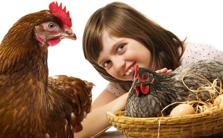 little girl with a hen (chicken) - concept bio eggs