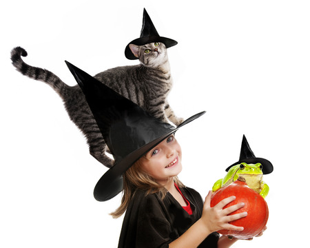 halloween witch with her cat and a green frog