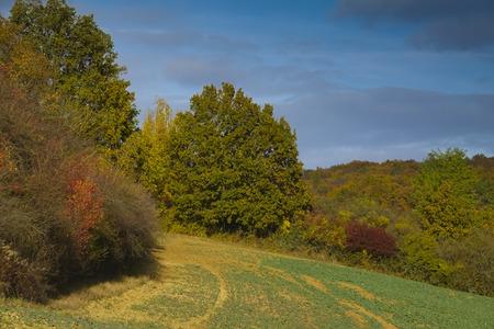 moravia: autumnal landscape - Europe, Czech Republic , Moravia, Kyjov Stock Photo