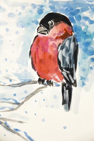 bullfinch bird in winter - watercolor illustration Stock Photo